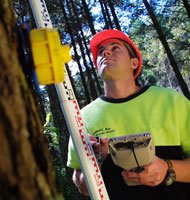Forestry TRoQ website launched